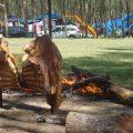 camping-lazer-09